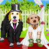Puppy Dog Wedd…